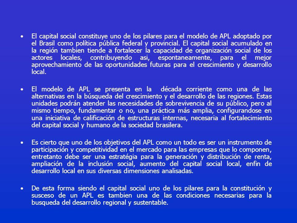 El capital social constituye uno de los pilares para el modelo de APL adoptado por el Brasil como política pública federal y provincial.