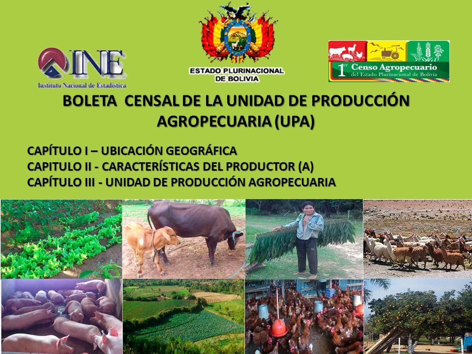 CAPÍTULO I – UBICACIÓN GEOGRÁFICA CAPITULO II - CARACTERÍSTICAS DEL PRODUCTOR (A) CAPÍTULO III - UNIDAD DE PRODUCCIÓN AGROPECUARIA BOLETA CENSAL DE LA