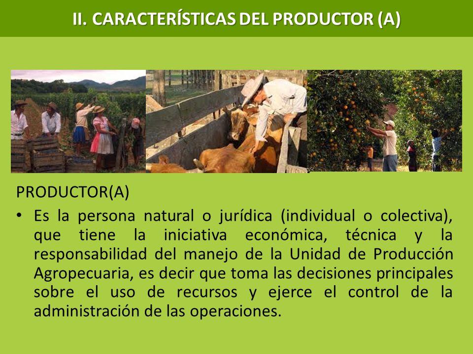 II. CARACTERÍSTICAS DEL PRODUCTOR (A) PRODUCTOR(A) Es la persona natural o jurídica (individual o colectiva), que tiene la iniciativa económica, técni