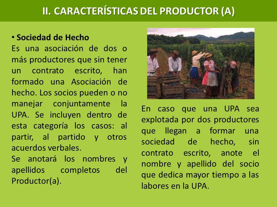 Sociedad de Hecho Es una asociación de dos o más productores que sin tener un contrato escrito, han formado una Asociación de hecho. Los socios pueden