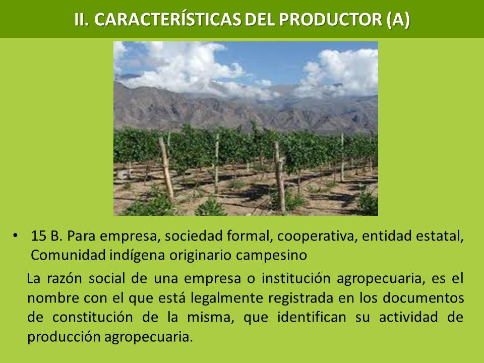 15 B. Para empresa, sociedad formal, cooperativa, entidad estatal, Comunidad indígena originario campesino La razón social de una empresa o institució