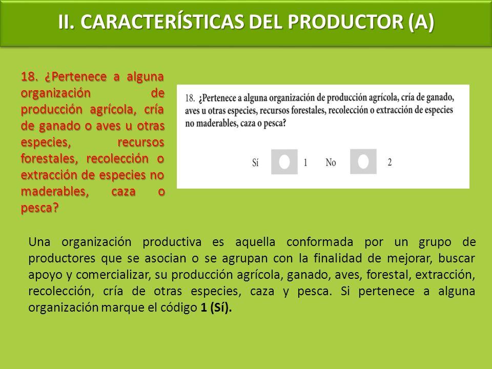 Una organización productiva es aquella conformada por un grupo de productores que se asocian o se agrupan con la finalidad de mejorar, buscar apoyo y