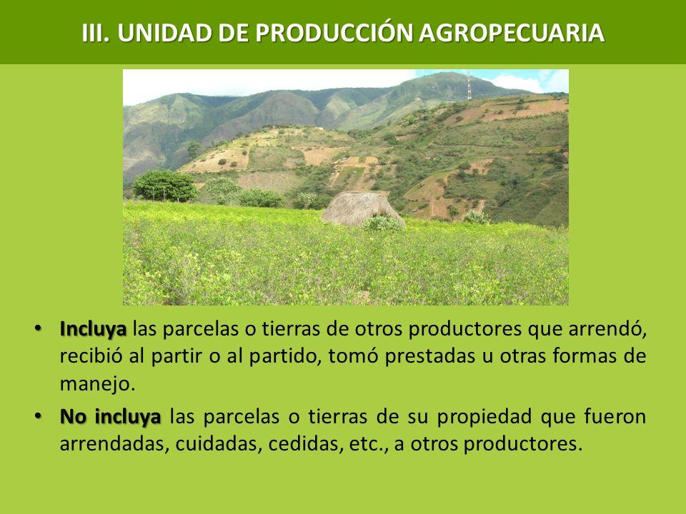 III. UNIDAD DE PRODUCCIÓN AGROPECUARIA Incluya Incluya las parcelas o tierras de otros productores que arrendó, recibió al partir o al partido, tomó p