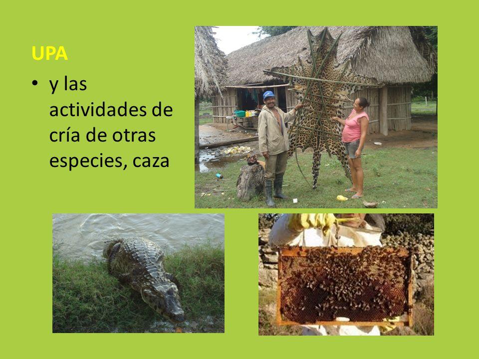 UPA y las actividades de cría de otras especies, caza
