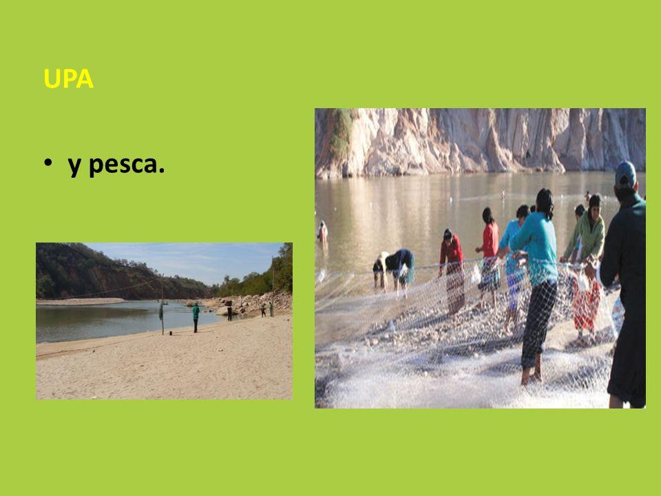 UPA y pesca.