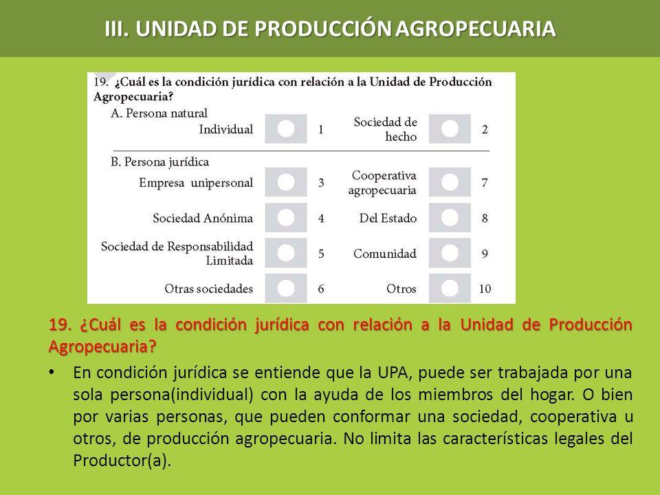 III. UNIDAD DE PRODUCCIÓN AGROPECUARIA 19. ¿Cuál es la condición jurídica con relación a la Unidad de Producción Agropecuaria? En condición jurídica s
