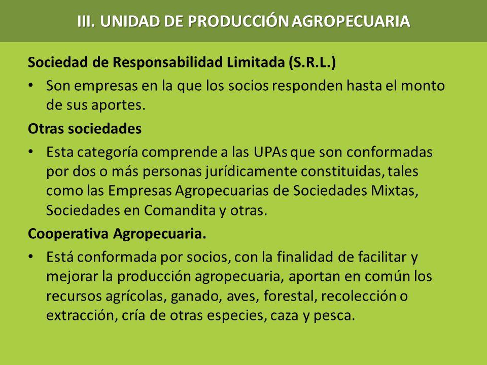 Sociedad de Responsabilidad Limitada (S.R.L.) Son empresas en la que los socios responden hasta el monto de sus aportes. Otras sociedades Esta categor