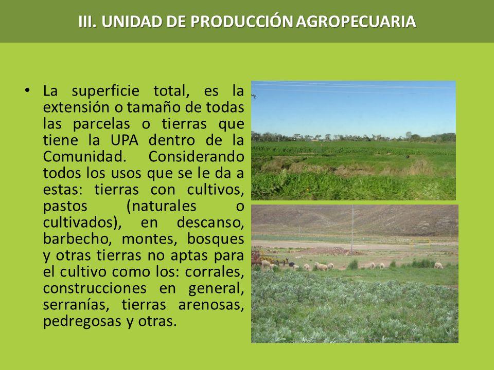 La superficie total, es la extensión o tamaño de todas las parcelas o tierras que tiene la UPA dentro de la Comunidad. Considerando todos los usos que