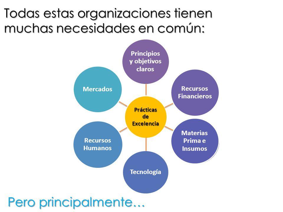 Pero principalmente… Principios y objetivos claros Recursos Financieros Materias Prima e Insumos Tecnología Recursos Humanos Mercados Prácticas de Exc