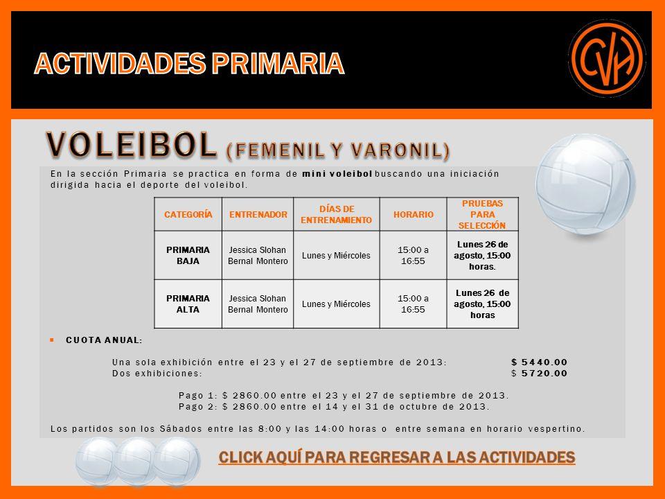 En la sección Primaria se practica en forma de mini voleibol buscando una iniciación dirigida hacia el deporte del voleibol.
