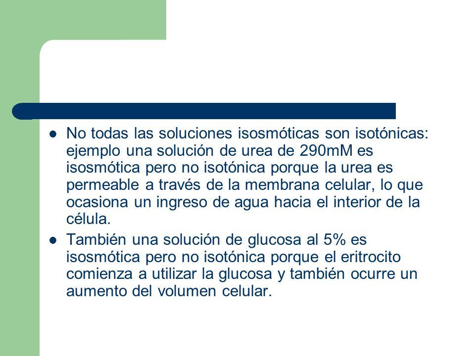 No todas las soluciones isosmóticas son isotónicas: ejemplo una solución de urea de 290mM es isosmótica pero no isotónica porque la urea es permeable