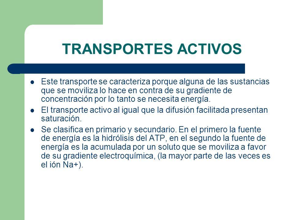 TRANSPORTES ACTIVOS Este transporte se caracteriza porque alguna de las sustancias que se moviliza lo hace en contra de su gradiente de concentración por lo tanto se necesita energía.