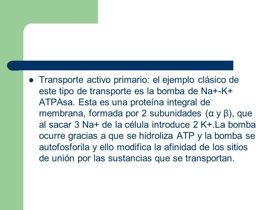 Transporte activo primario: el ejemplo clásico de este tipo de transporte es la bomba de Na+-K+ ATPAsa. Esta es una proteína integral de membrana, for