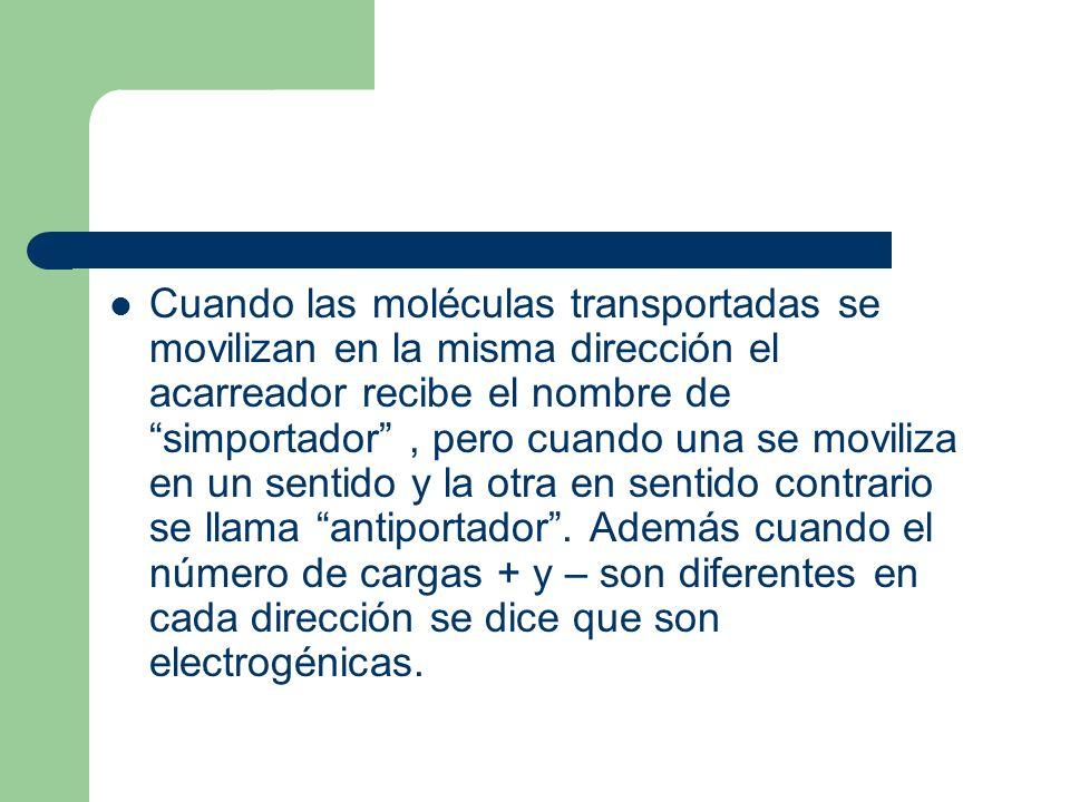 Cuando las moléculas transportadas se movilizan en la misma dirección el acarreador recibe el nombre de simportador, pero cuando una se moviliza en un