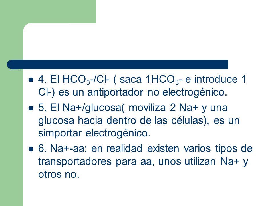 4. El HCO 3 -/Cl- ( saca 1HCO 3 - e introduce 1 Cl-) es un antiportador no electrogénico. 5. El Na+/glucosa( moviliza 2 Na+ y una glucosa hacia dentro