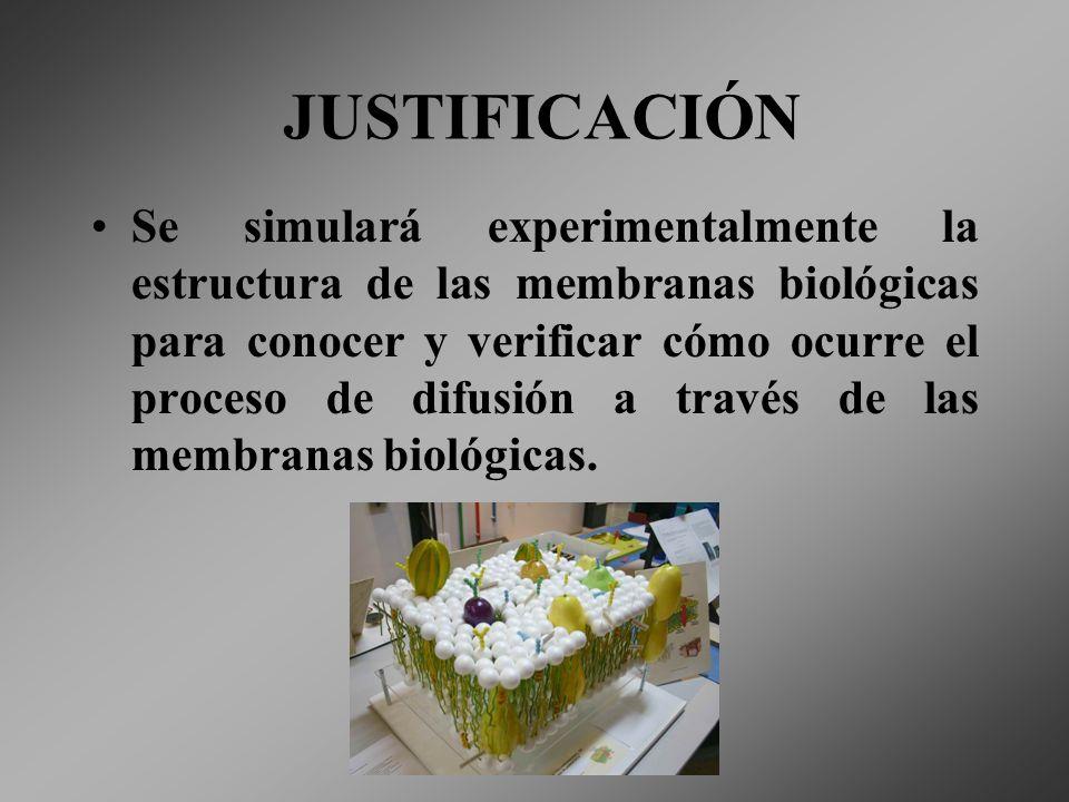 JUSTIFICACIÓN Se simulará experimentalmente la estructura de las membranas biológicas para conocer y verificar cómo ocurre el proceso de difusión a tr