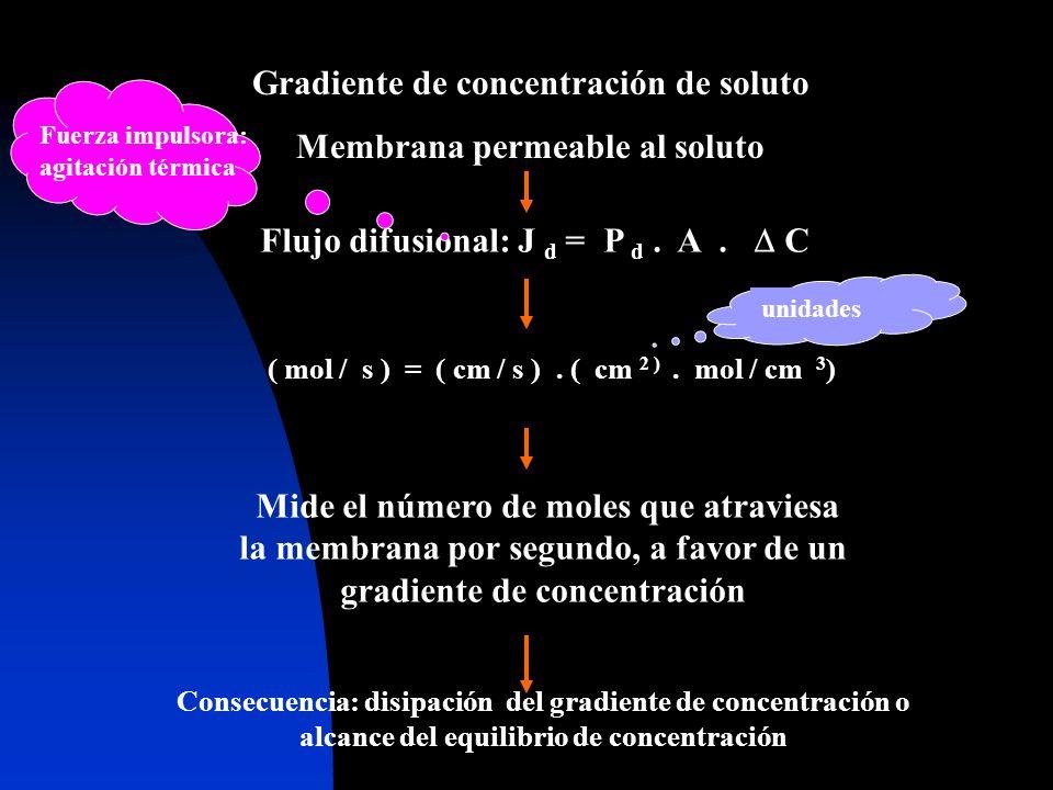 Flujo difusional: J d = P d. A. C Gradiente de concentración de soluto Membrana permeable al soluto ( mol / s ) = ( cm / s ). ( cm 2 ). mol / cm 3 ) M
