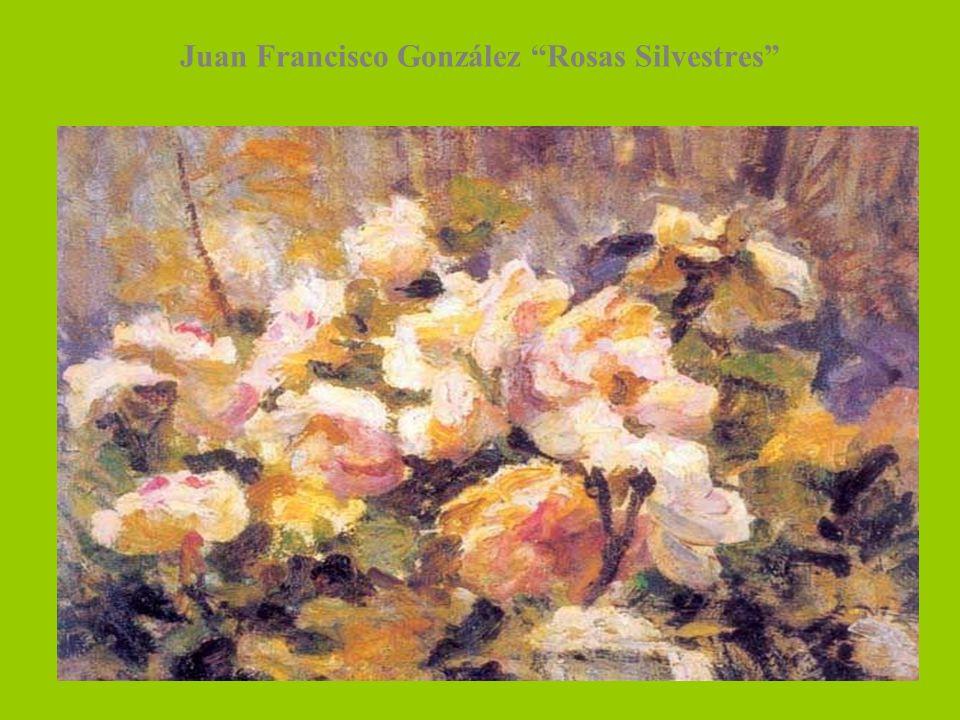 Juan Francisco González Rosas Silvestres