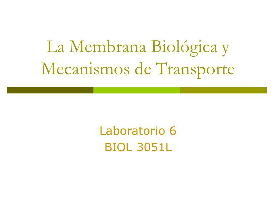 La Membrana Biológica y Mecanismos de Transporte Laboratorio 6 BIOL 3051L