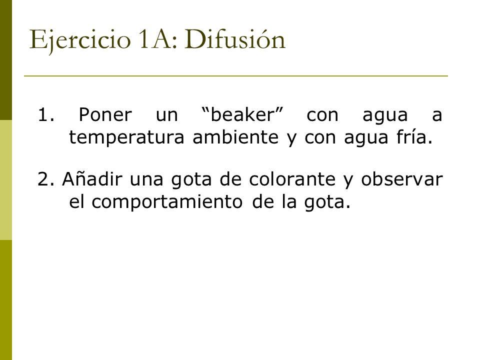 Ejercicio 1A: Difusión 1. Poner un beaker con agua a temperatura ambiente y con agua fría. 2. Añadir una gota de colorante y observar el comportamient