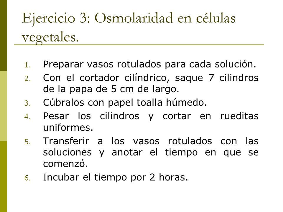 Ejercicio 3: Osmolaridad en células vegetales. 1. Preparar vasos rotulados para cada solución. 2. Con el cortador cilíndrico, saque 7 cilindros de la