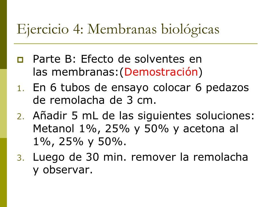 Ejercicio 4: Membranas biológicas Parte B: Efecto de solventes en las membranas:(Demostración) 1. En 6 tubos de ensayo colocar 6 pedazos de remolacha