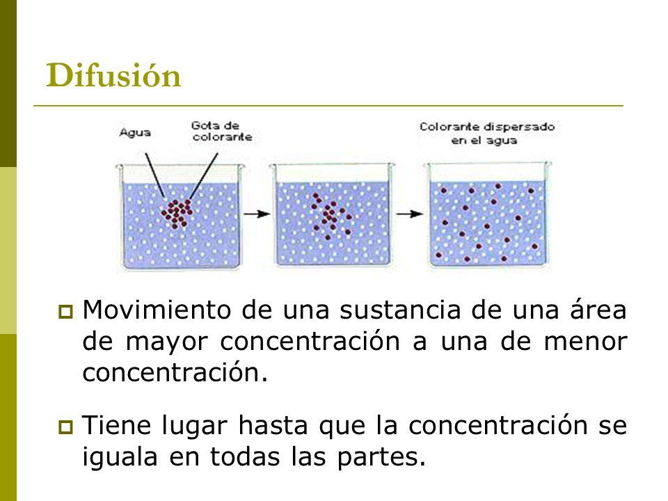 Difusión Movimiento de una sustancia de una área de mayor concentración a una de menor concentración. Tiene lugar hasta que la concentración se iguala
