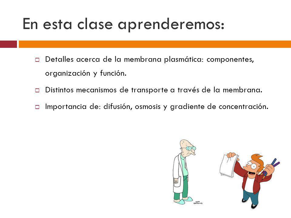 En esta clase aprenderemos: Detalles acerca de la membrana plasmática: componentes, organización y función. Distintos mecanismos de transporte a travé