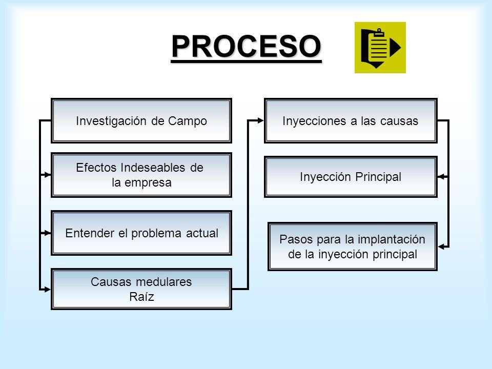 PROCESO Investigación de Campo Efectos Indeseables de la empresa Entender el problema actual Causas medulares Raíz Inyecciones a las causas Inyección Principal Pasos para la implantación de la inyección principal