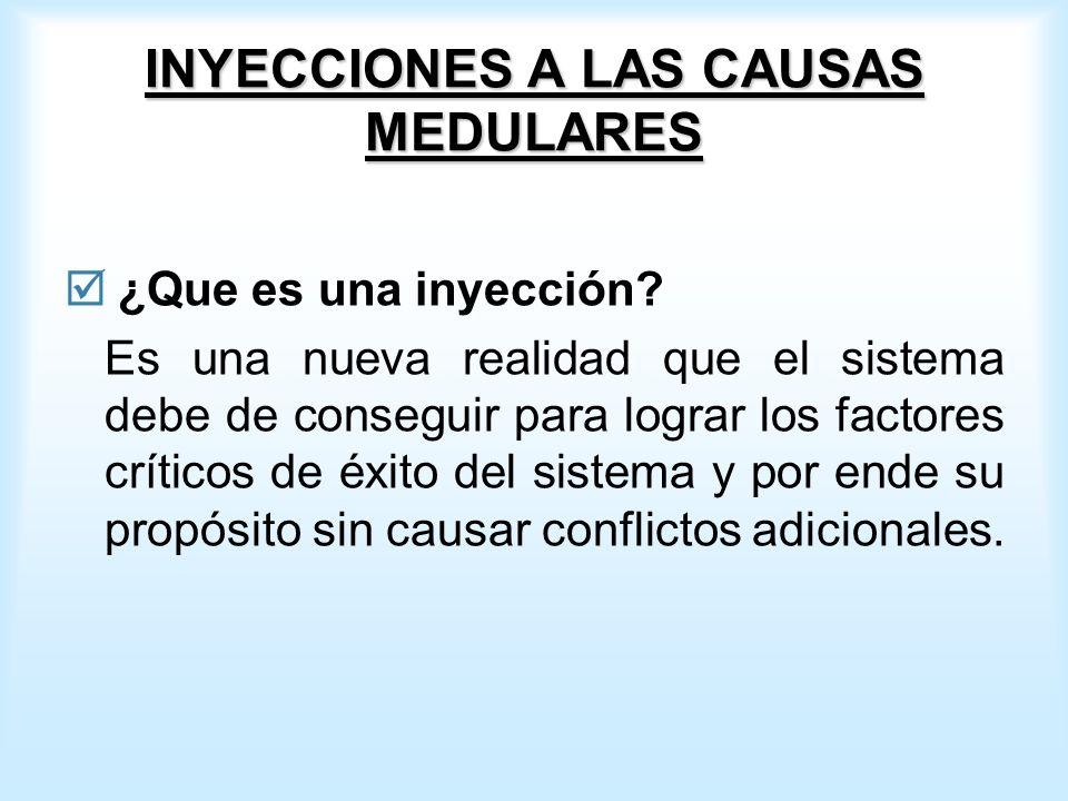 INYECCIONES A LAS CAUSAS MEDULARES ¿Que es una inyección.