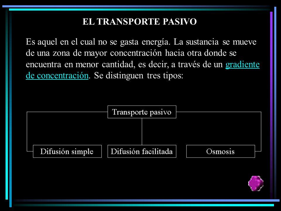 El paso a través de la membrana se lleva a cabo bajo dos modalidades: A. Transporte pasivo: Sin gasto de energía. B. Transporte activo: Con gasto de e