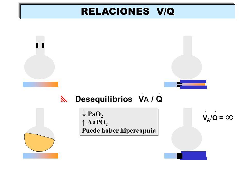 Desequilibrios V A / Q.. V A /Q =.. PaO 2 AaPO 2 Puede haber hipercapnia PaO 2 AaPO 2 Puede haber hipercapnia RELACIONES V/Q