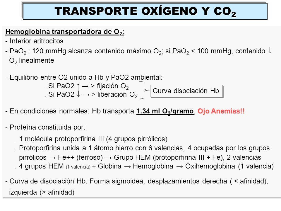 Hemoglobina transportadora de O 2 : - Interior eritrocitos - PaO 2 : 120 mmHg alcanza contenido máximo O 2 ; si PaO 2 < 100 mmHg, contenido O 2 lineal