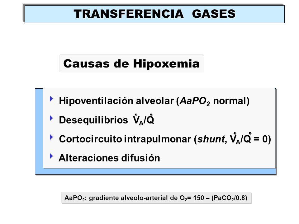 Hipoventilación alveolar (AaPO 2 normal) Desequilibrios V A /Q Cortocircuito intrapulmonar (shunt, V A /Q = 0) Alteraciones difusión Hipoventilación a