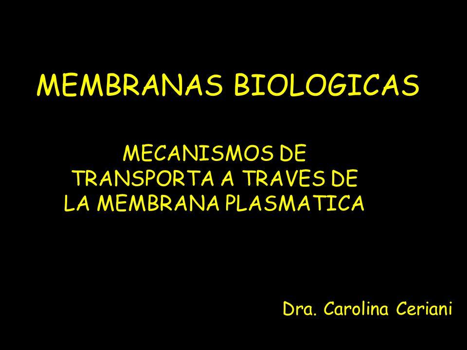 MEMBRANAS BIOLOGICAS MECANISMOS DE TRANSPORTA A TRAVES DE LA MEMBRANA PLASMATICA Dra. Carolina Ceriani