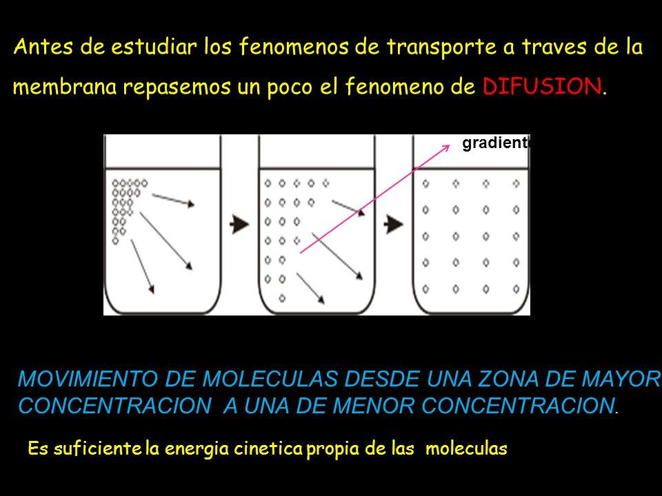 Antes de estudiar los fenomenos de transporte a traves de la membrana repasemos un poco el fenomeno de DIFUSION. MOVIMIENTO DE MOLECULAS DESDE UNA ZON