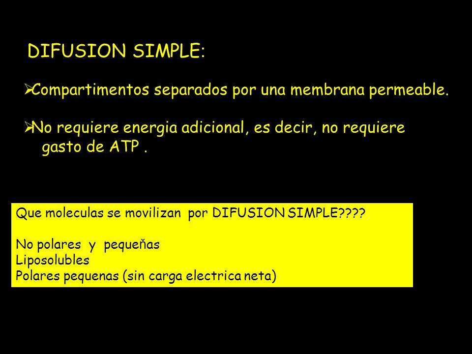 DIFUSION SIMPLE : Compartimentos separados por una membrana permeable. No requiere energia adicional, es decir, no requiere gasto de ATP. Que molecula