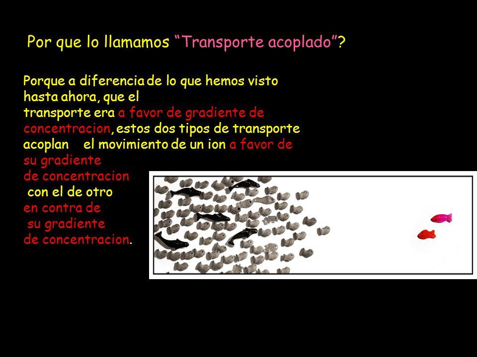 Por que lo llamamos Transporte acoplado? Porque a diferencia de lo que hemos visto hasta ahora, que el transporte era a favor de gradiente de concentr