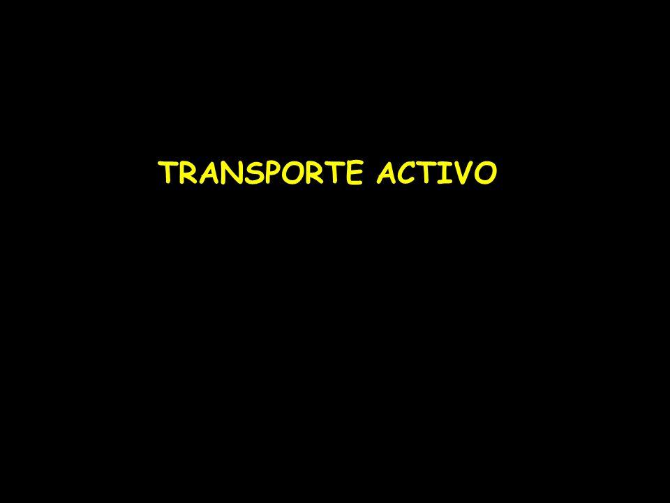 TRANSPORTE ACTIVO