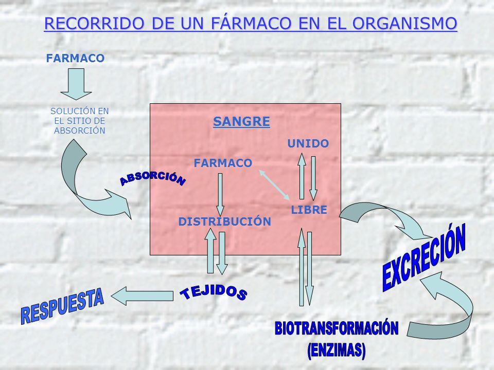 SANGRE FARMACO DISTRIBUCIÓN UNIDO LIBRE FARMACO SOLUCIÓN EN EL SITIO DE ABSORCIÓN RECORRIDO DE UN FÁRMACO EN EL ORGANISMO