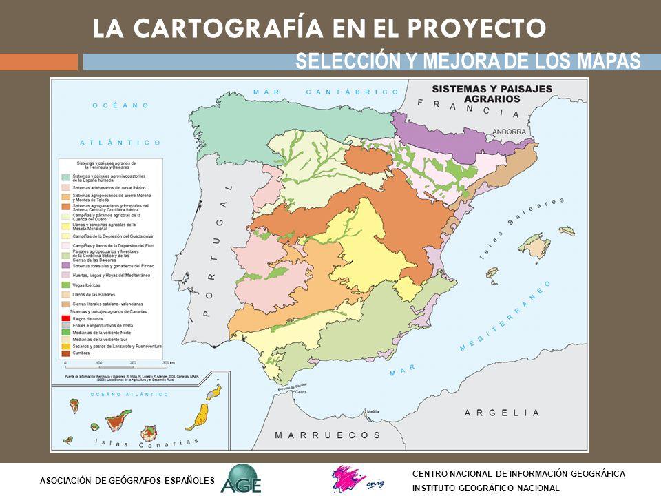 LA CARTOGRAFÍA EN EL PROYECTO CENTRO NACIONAL DE INFORMACIÓN GEOGRÁFICA INSTITUTO GEOGRÁFICO NACIONAL ASOCIACIÓN DE GEÓGRAFOS ESPAÑOLES INSERCIÓN DE LA CARTOGRAFÍA EN LA ESTRUCTURA DE CONTENIDOS