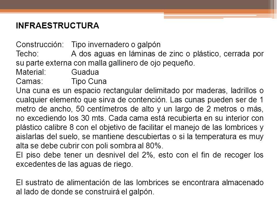 INFRAESTRUCTURA Construcción:Tipo invernadero o galpón Techo:A dos aguas en láminas de zinc o plástico, cerrada por su parte externa con malla galline