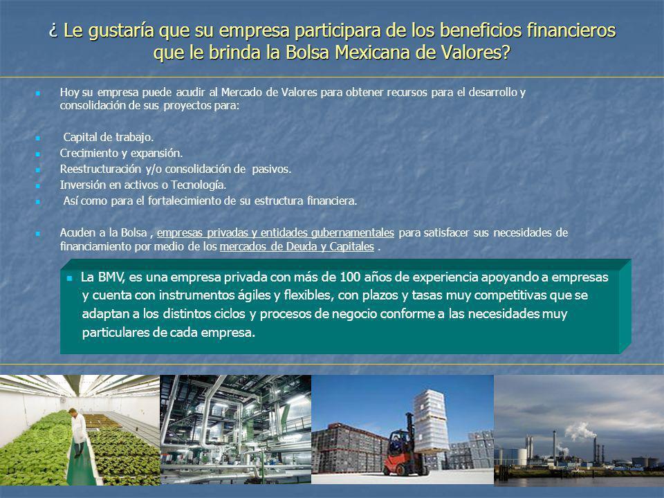 ¿ Le gustaría que su empresa participara de los beneficios financieros que le brinda la Bolsa Mexicana de Valores? Hoy su empresa puede acudir al Merc