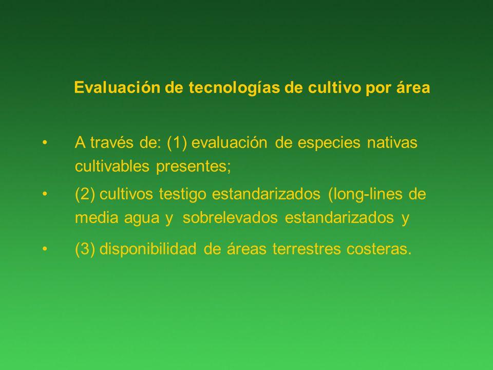 Evaluación de tecnologías de cultivo por área A través de: (1) evaluación de especies nativas cultivables presentes; (2) cultivos testigo estandarizados (long-lines de media agua y sobrelevados estandarizados y (3) disponibilidad de áreas terrestres costeras.