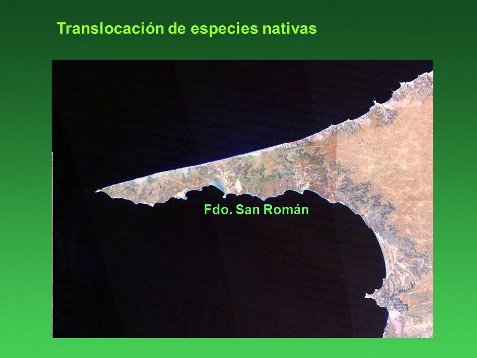 Golfo San José Fdo. San Román Translocación de especies nativas