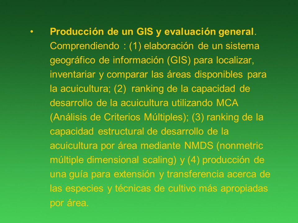 Producción de un GIS y evaluación general.