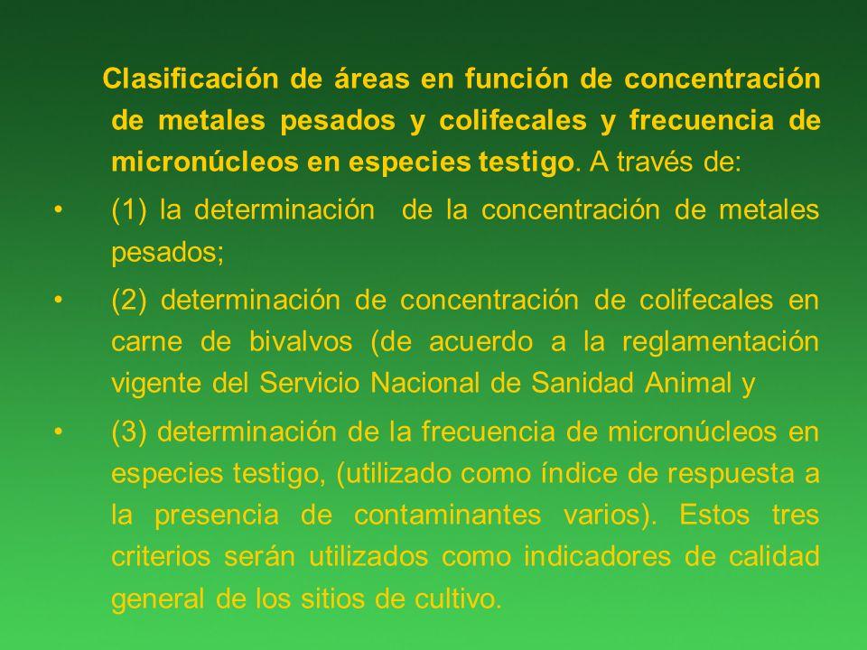 Clasificación de áreas en función de concentración de metales pesados y colifecales y frecuencia de micronúcleos en especies testigo.