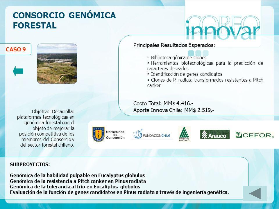 CONSORCIO GENÓMICA FORESTAL Principales Resultados Esperados: Biblioteca génica de clones Herramientas biotecnológicas para la predicción de caractere