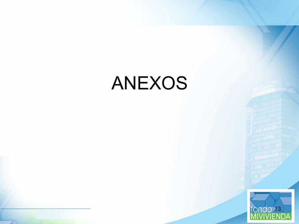 13 ANEXOS