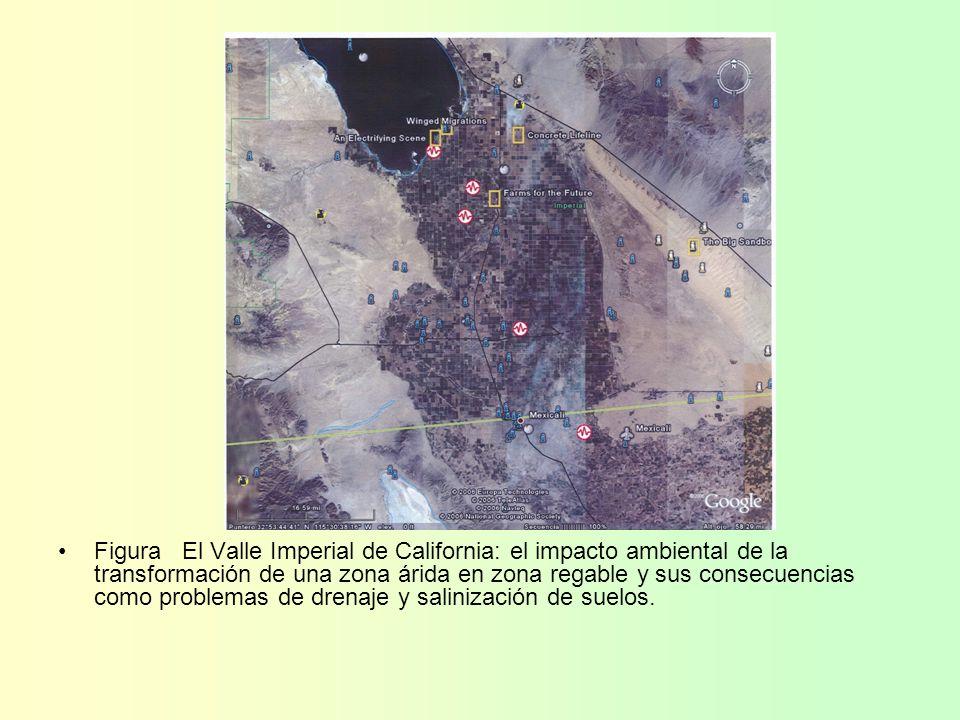 Figura El Valle Imperial de California: el impacto ambiental de la transformación de una zona árida en zona regable y sus consecuencias como problemas de drenaje y salinización de suelos.